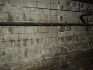 Concrete block wall with leaks